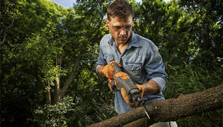 Lakewood Ranch Tree Services